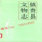 镇赉县文物志.pdf下载